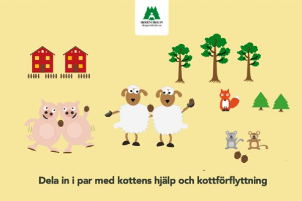 Skogen i Skolans övningar kopplar till läroplanerna och kan användas både inomhus och utomhus
