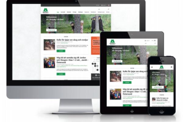 Följ Skogen i Skolan i våra digitala medier!