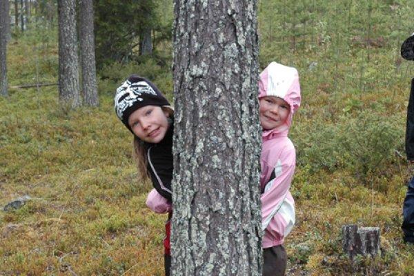 Skogen i Skolan önskar läsarna trevlig Kristi Himmelfärdshelg!