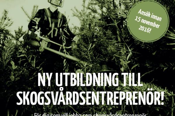 Utbildning till skogsvårdsentreprenör. Ansök senast 15/11!