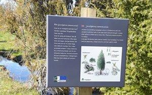 Skylt med Skogen i Skolans faktablad om en
