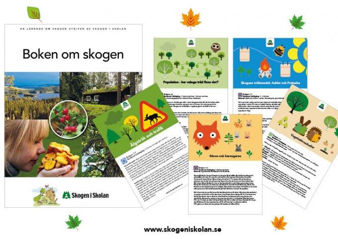 Skogen i Skolans läromedel och övningar använder metodiken utomhuspedagogik och kopplar till LGR11.
