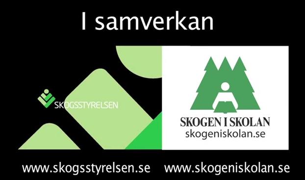 Skogsstyrelsen, Skogen i Skolan, film, utomhuspedagogik