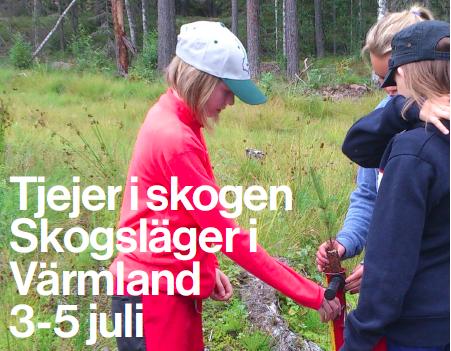 Tjejer i skogen - skogsläger i Värmland 3-5 juli