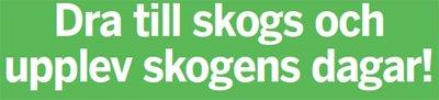 Skogens dagar i Karlstad 2016