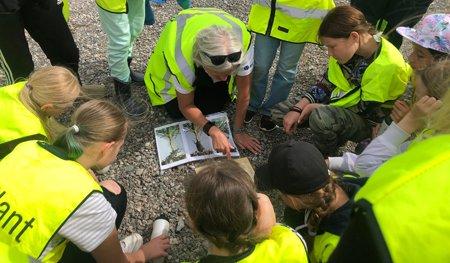 Skogskollo för tjejer i Sundsvall arrangerat av Skogstekniska klustret och Skogen i Skolans region Västernorrland