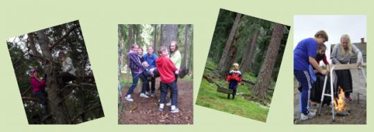 Skogen i Skolans skrivtävling