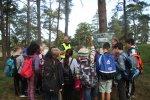 Tusentals elever fick skoglig kunskap på #JOSIS16