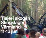 Tjejer i skogen 11-13 juni 2017